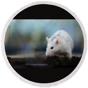 Mouse Round Beach Towel