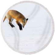Mousing Fox Round Beach Towel
