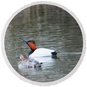 Mr And Mrs Canvasback Round Beach Towel