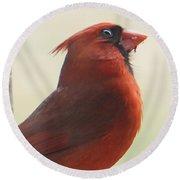 Mr Cardinal Round Beach Towel by Maxine Billings