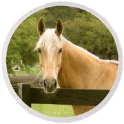 Mr. Ed Round Beach Towel