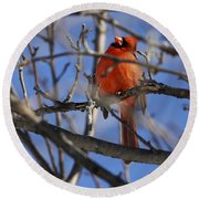 Mr. Red Beauty Round Beach Towel