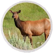 Ms. Elk Round Beach Towel