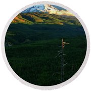 Mt Hood With Snag Round Beach Towel