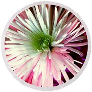 Multi Color Aster Round Beach Towel
