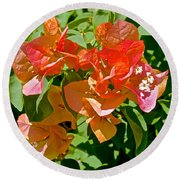 Multi-colored Bougainvillea At Pilgrim Place In Claremont-california  Round Beach Towel