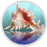 Murex Seashell Reflection Round Beach Towel