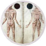 Muscle Man, Brains Ventricles, 15th Round Beach Towel