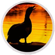 Muscovy Sunset Round Beach Towel