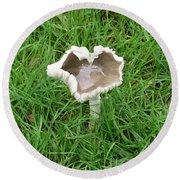 Mushroom Heart Round Beach Towel