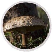 Mushroom II Round Beach Towel
