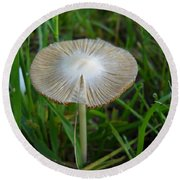 Mushroom In The Grass Round Beach Towel