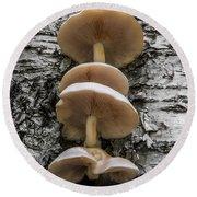 Mushroom Treehouse Round Beach Towel