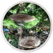 Mushrooms Hdr Round Beach Towel