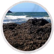Mussels Round Beach Towel