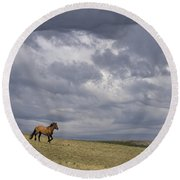 Mustang And Stormy Sky Round Beach Towel