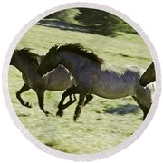 Mustang Mares Round Beach Towel