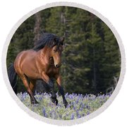 Mustang Stallion And Lupines Round Beach Towel