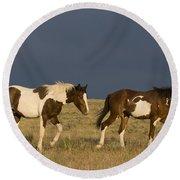 Mustangs In Nevada Round Beach Towel