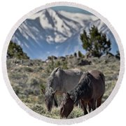 Mustangs In The Sierra Nevada Mountains Round Beach Towel