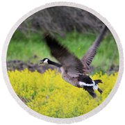 Mustard Flight Round Beach Towel