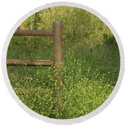 Mustard Grass And Fence At Entrance To Peters Canyon Round Beach Towel