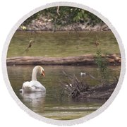 Mute Swan         St. Joe River          June         Indiana Round Beach Towel