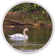 Mute Swan     Image 2      Spring        St. Joe River          Indiana Round Beach Towel