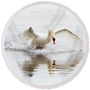 Mute Swan Landing II Round Beach Towel
