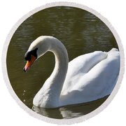 Mute Swan On Rolleston Pond Round Beach Towel