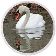 Mute Swan Reflecting Round Beach Towel
