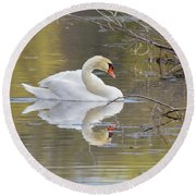 Mute Swan Reflection I Round Beach Towel