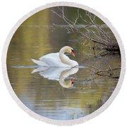 Mute Swan Reflection Round Beach Towel