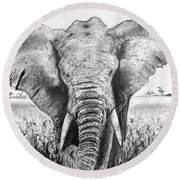 My Friend The Elephant II Round Beach Towel