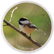 My Little Chickadee Round Beach Towel