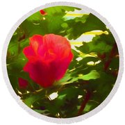 My Love Is Like  A Red Red Rose Of Sharon Round Beach Towel