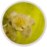 My Sweet Wild Rose Round Beach Towel