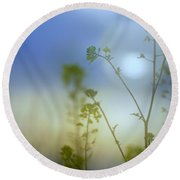 Mysterious Forest At Dusk Blue Round Beach Towel