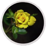 Mystic Yellow Rose Round Beach Towel