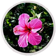 Mystical Bloom Round Beach Towel