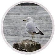 N Y C Water Gull Round Beach Towel