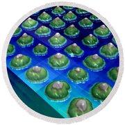 Nanoparticles, Lithium Metal, Afm Round Beach Towel