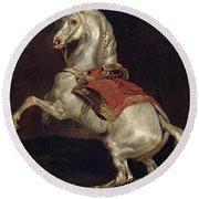Napoleon's Stallion Tamerlan Round Beach Towel