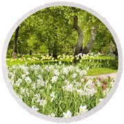 Narcissus In Apple Garden Round Beach Towel