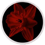 Narcissus Red Flower Square Round Beach Towel