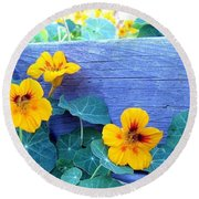 Nasturtium Box Round Beach Towel