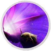 Native Bee On A Purple Flower Round Beach Towel