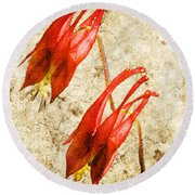 Native Virginia Columbine Round Beach Towel
