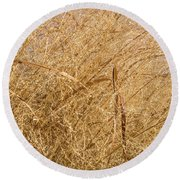 Natural Abstracts - Elaborate Shapes And Patterns In The Golden Grass Round Beach Towel