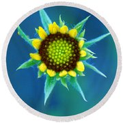 Natural Art Round Beach Towel